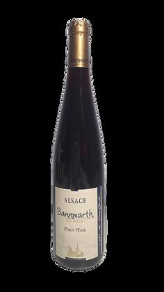Pinot Noir Côte de Rouffach 2019