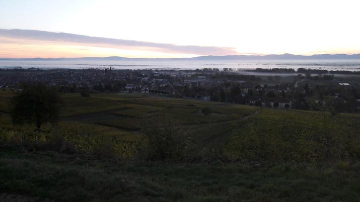Vue de Rouffach au petit matin