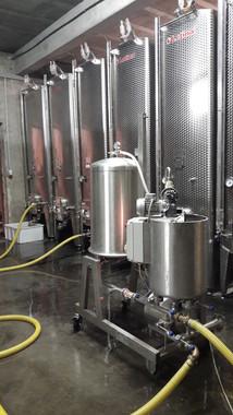 Filtration des vins