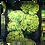 Thumbnail: Chrysanths Nuit - Lime - Silk Cushion - £89/NOW£49