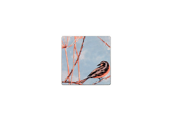 Little Finches - Coaster