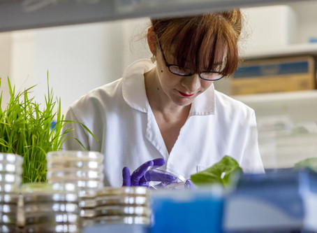 Herbal Essences, marca #CrueltyFree, anuncia asociación exclusiva con los Jardines Reales