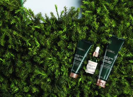 Tea tree collection, la nueva línea de Biossance ideal para purificar, calmar y equilibrar la piel