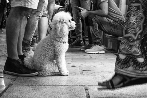 Lecce, 25 Agosto 2016