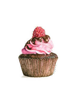 Rasberry Dream Cupcake