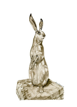 Stone Rabbit of Santa Fe
