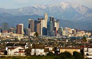 Rose LA.jpg