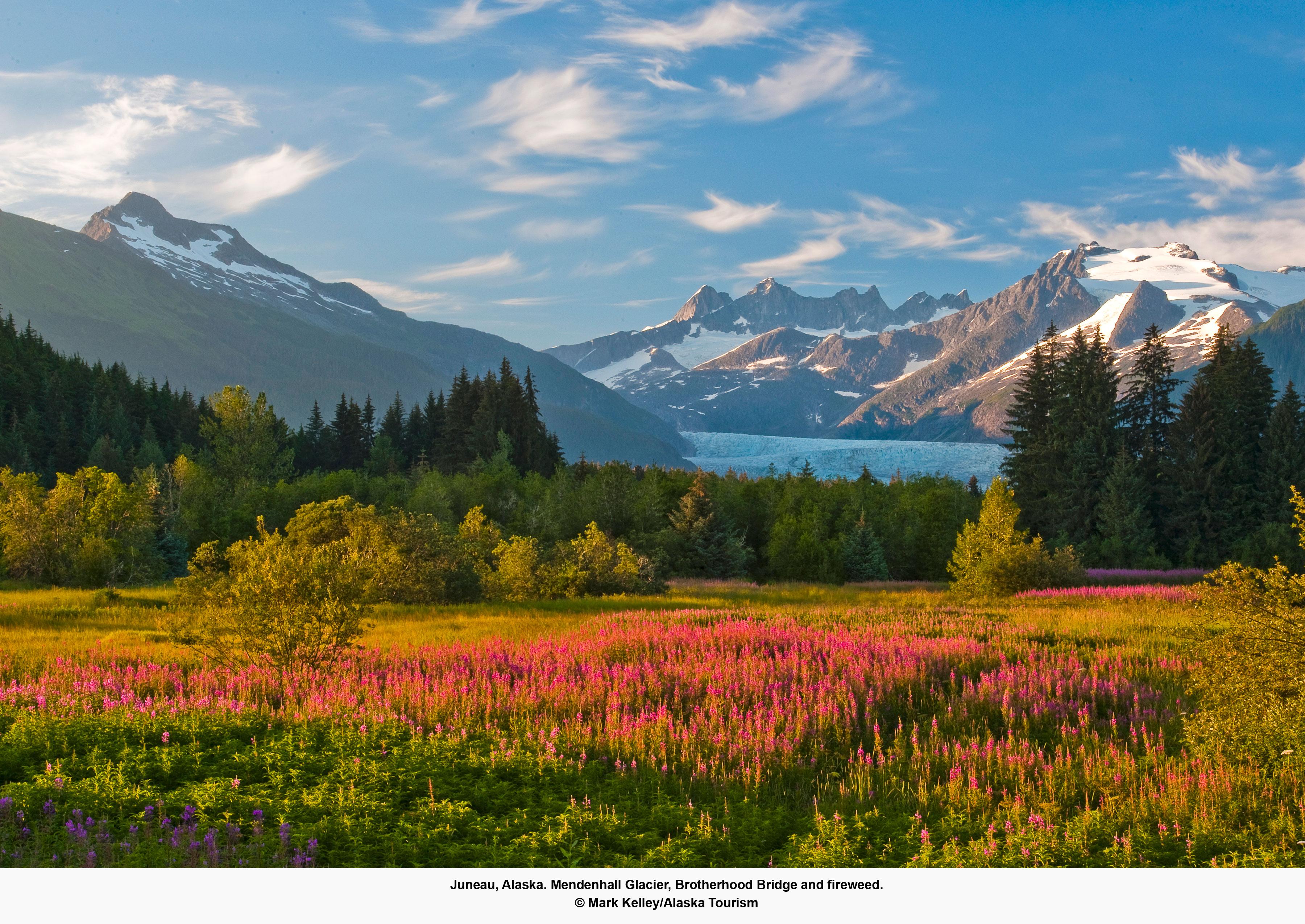 AK Juneau Glacier