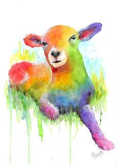 Rainbow Lamb