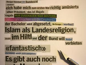 «Riesiger Koksfund im Bundesrat»