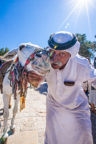 Bedouin Arab poses with his donkey at the Mount of Olives in Jerusalem, Israel