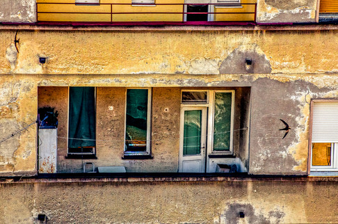 Barn swallows over Old Belgrade Serbia