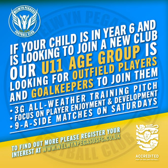 U11 Age Group – Players Wanted
