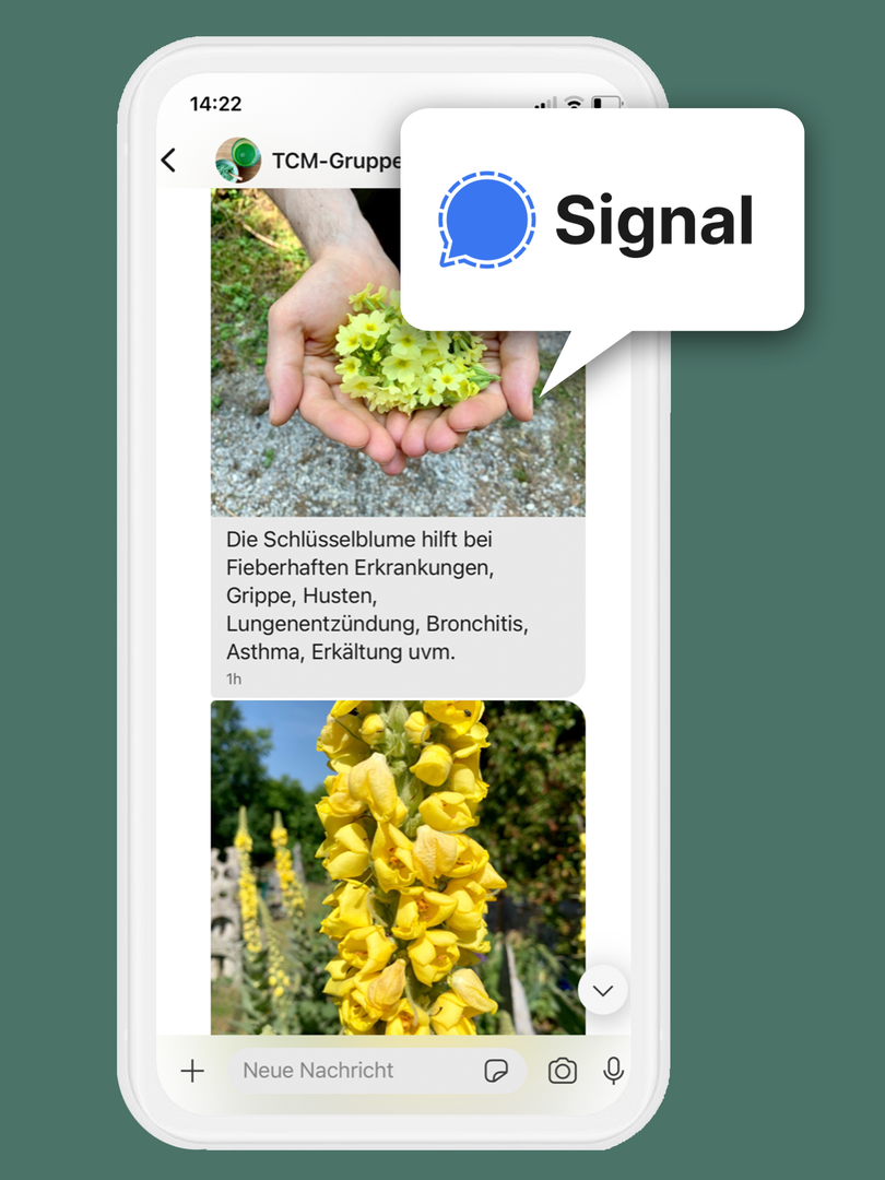 signal2.png