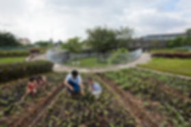 FarmingKindergarten_Hiroyuki-Oki.png