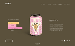 Kudingo_Website_Product_close_up_–_1.png