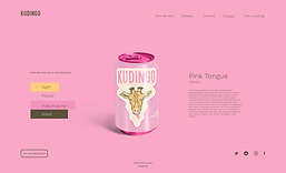 Kudingo Website Product close up.png