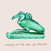 fran hammond ibis website.jpg