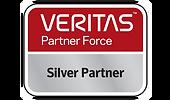Veritas-Silver-Partner-296_174.png
