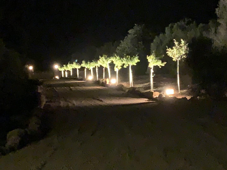 Driveway to gates