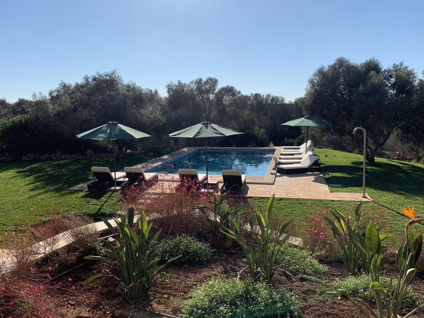 View to pool from outside dining area