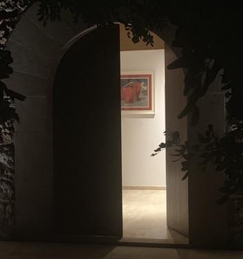Looking through the front door