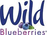 wb-logo-cmyk.jpg