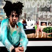 TW1$T - Woods PT.2
