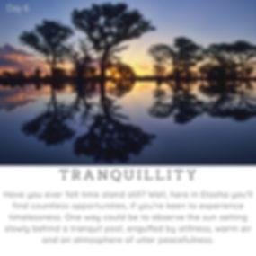 Day6_Tranquillity.jpg
