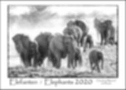elefanten-kalender2020 - A3-size