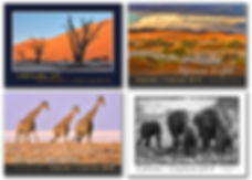 All 4 Namibia Calendars 2019.jpg