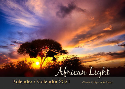African light 2021