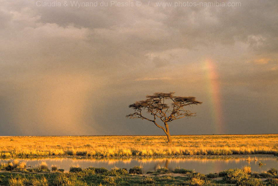 Rainbow over the African savanna, Etosha, Namibia