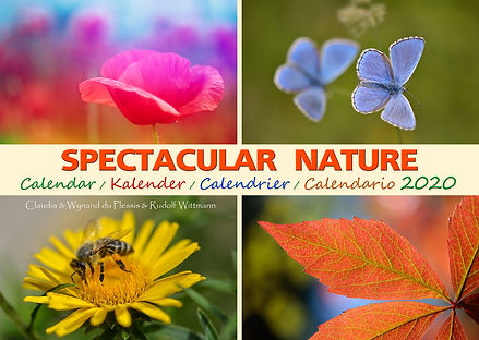 Spectacular Nature 2020