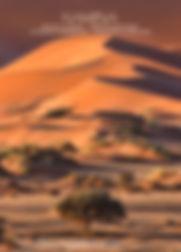 Birthday-Cal-Namibia_01.jpg