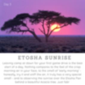 Day3_Etosha Sunrise.png