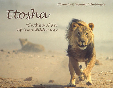 Etosha book - edition 1
