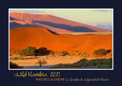 Wild Namibia Calendar 2021