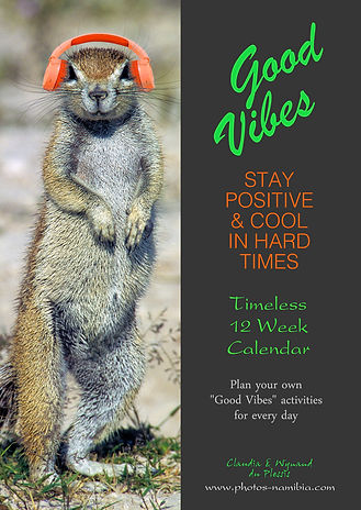 Good Vibes - Timeless 12 Week Calendar