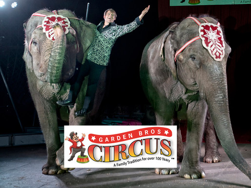The World's Greatest Show is Coming to Shelbyville