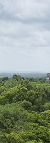 La veduta da Tikal