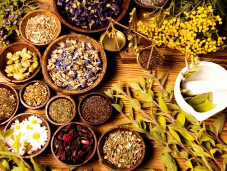 Le erbe della curandera: l'approccio sciamanico alla botanica e all'erboristeria