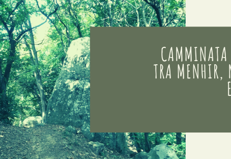 Camminata erboristica tra menhir, meditazioni e racconti…