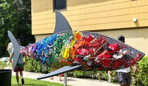 fos shark.jpg