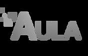 logo_aula_edited.png