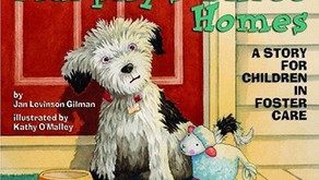 Murphy's Three Homes: A Story for Children in Foster Care - Jan Levinson Gilman (2009)