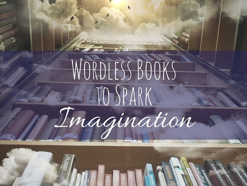 How to Deal with Wordless Books