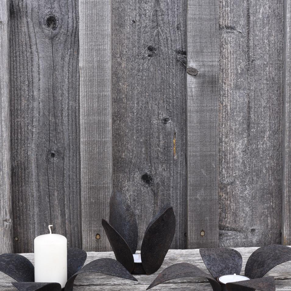 Lanterns LILY & TULIP