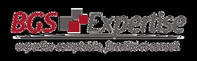 BGS expertise logo
