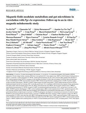 Magnetic fields modulate metabolism and gut microbiome in correlation with Pgc‐1α expression: Follow‐up to an in vitro magnetic mitohormetic study